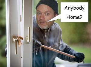 burglar tom
